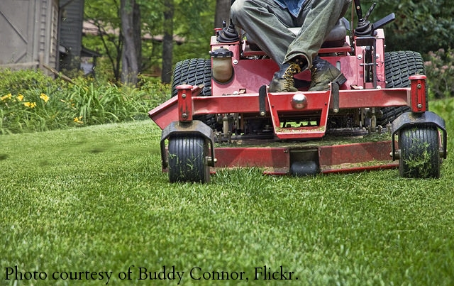 5 ways to market your lawn care business