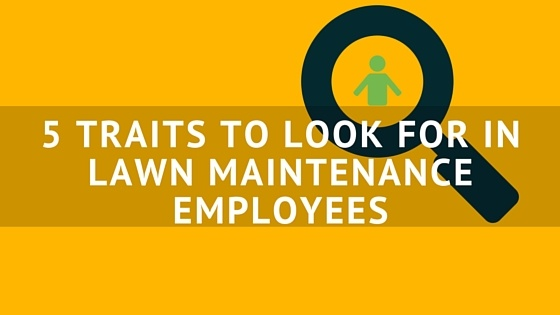 5_TRAITS_TO_LOOK_FOR_IN_LAWN_MAINTENANCE_EMPLOYEES.jpg
