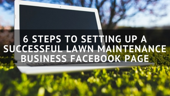 An analysis of the successful lawn care business